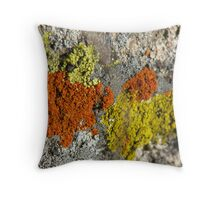 Lichens on Granite Throw Pillow