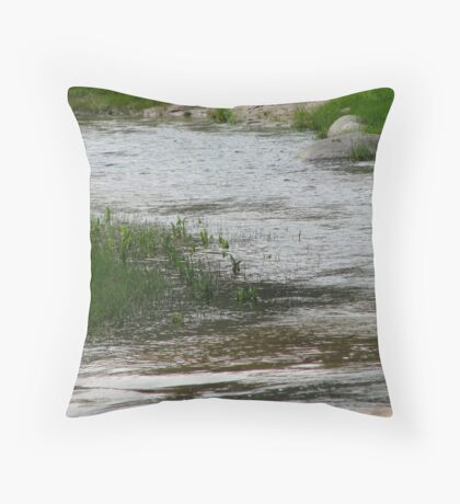 Shimmering Stream Throw Pillow