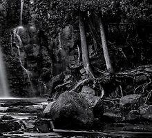 Gooseberry Falls by SandraNightski
