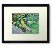 By the Bank Framed Print
