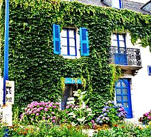 The ivy covered building by abwi210696