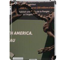 Tiny Lesothosaurus iPad Case/Skin