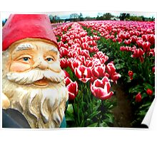 Sugared Flowers Gnome II Poster