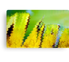 Dino tail reflections Canvas Print