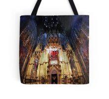 P1420611-P1420612 _XnView _GIMP Tote Bag