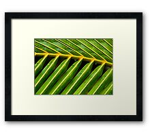 Port Douglas Series 5 Framed Print