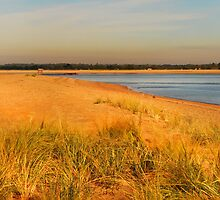 Another view of Plum Island by john forrant