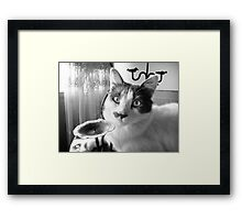 Wazzup dude? Framed Print
