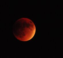 Blood Moon, Super-moon, Full Moon, Harvest Moon & Total Eclipse - All in one package deal (Rare) by Poete100