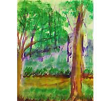 Misty Morning on Path in Park. watercolor Photographic Print