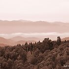Great Smokies 2 by Jeff Ore