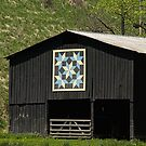 Kentucky Barn Quilt - Snow Crystals by Mary Carol Story