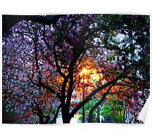 Luminescent Spring Poster