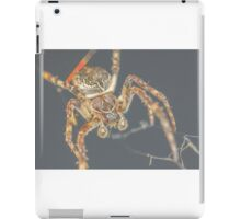 Furry Spider iPad Case/Skin