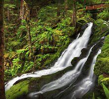 Horseshoe Creek Falls II by Tula Top