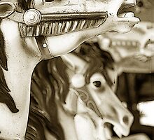 Carousel 56 by Joanne Mariol
