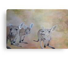 The Roos Metal Print