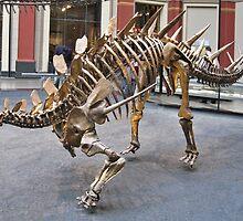 Cool Zigongosaurus by skeletonsrus