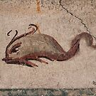 Fresco Detail - Dolphin by Samantha Higgs