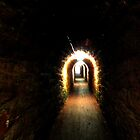 Smugglers Tunnel At Sheldon, Nr Teingnmouth by lynn carter