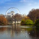 The London Eye from St James's Park by vivsworld