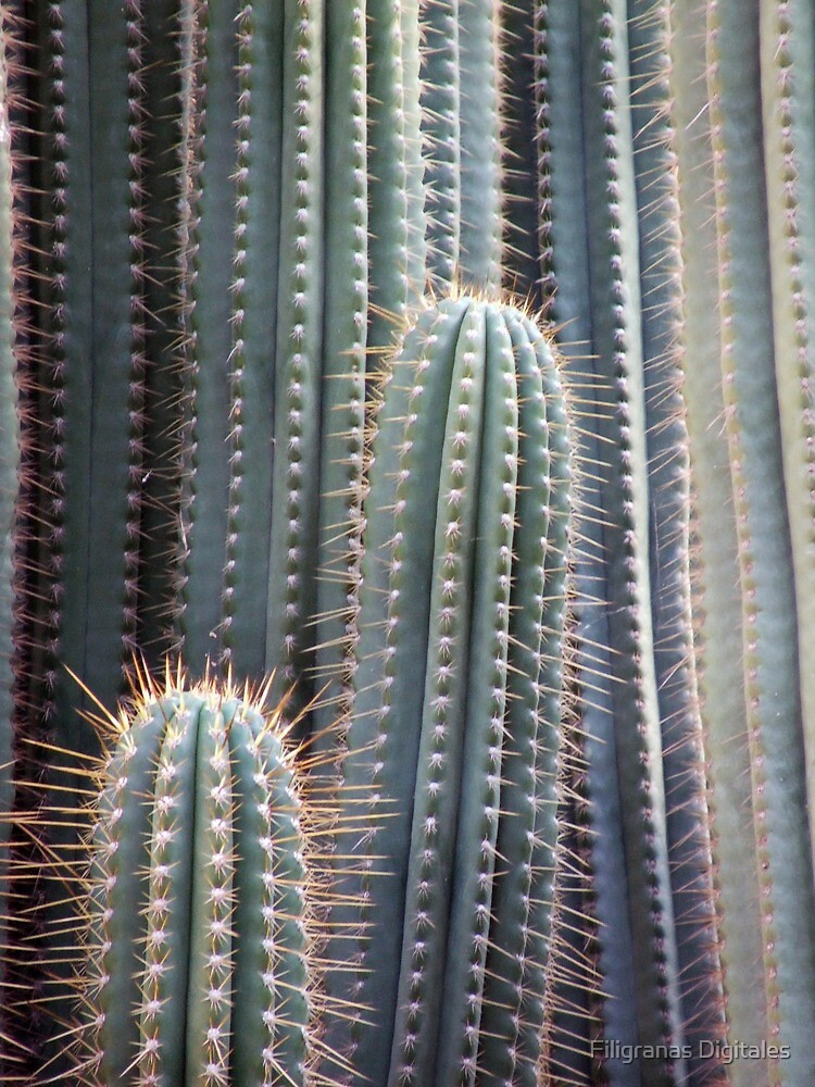 Cactus neighborhood by CharliSL