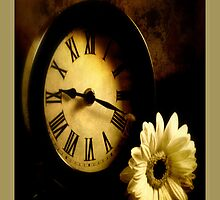 Petals Of Time by Aj Finan