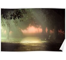 Princes Park Foggy Night Poster