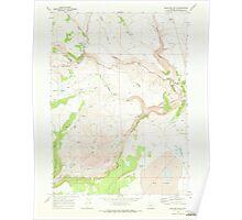 USGS Topo Map Oregon Sage Hen Butte 281353 1968 24000 Poster