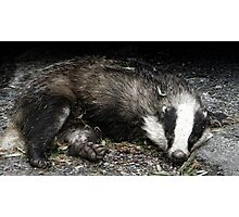 Roadkill Badger Photographic Print