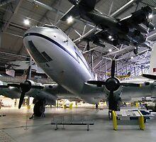 Harrier over Hastings by Andy Jordan