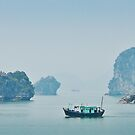 Halong Bay Panorama by Leigh Nelson
