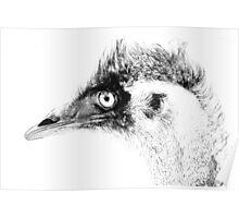 Emu ~2 Poster