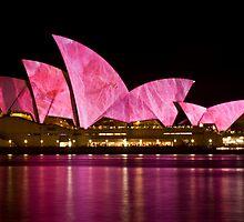 Sydney Vivid 2010 #2 by EblePhilippe