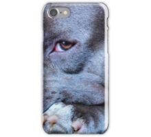 Royki iPhone Case/Skin