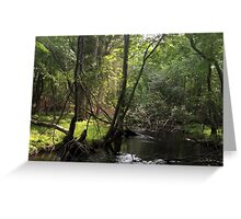 Naturescape 52 Greeting Card