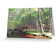 Naturescape 53 Greeting Card