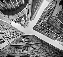 Dizzying Up - Sydney - Australia by Bryan Freeman