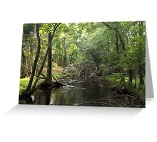Naturescape 54 Greeting Card