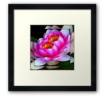 God's flowers © Framed Print
