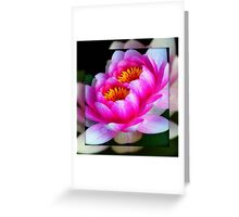 God's flowers © Greeting Card
