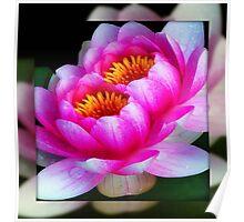 God's flowers © Poster
