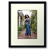 The Secret Garden III Framed Print