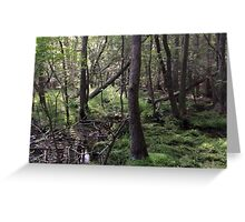 Naturescape 55 Greeting Card