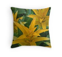 Bursting Bloom Throw Pillow
