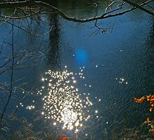 Glistening Sun by Susan Lotter