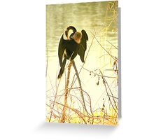 Anhinga on Stilts Greeting Card
