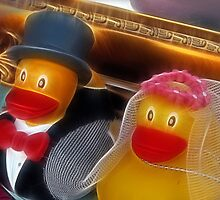 Duck wedding by Spadgie