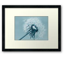 Summer Breeze... Framed Print