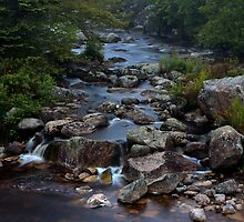 Pennant Brook III by Scott Ruhs